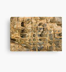 Rock Ledge Canvas Print