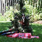 Christmas Tree by Luke Donegan