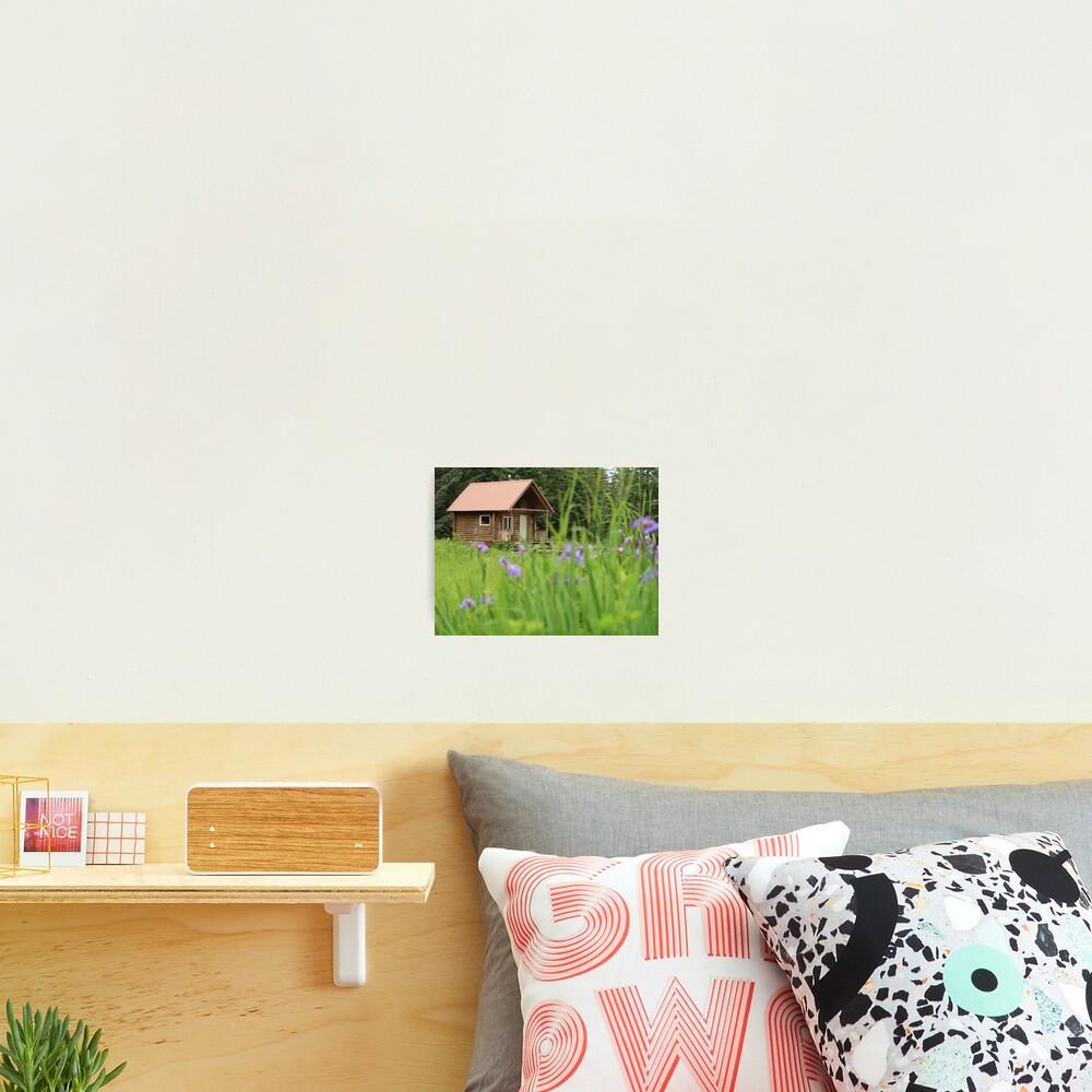 Alaskan Cabin with Irises  Photographic Print