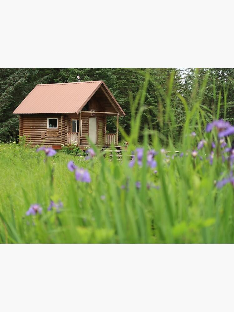 Alaskan Cabin with Irises  by suitcaseofbks