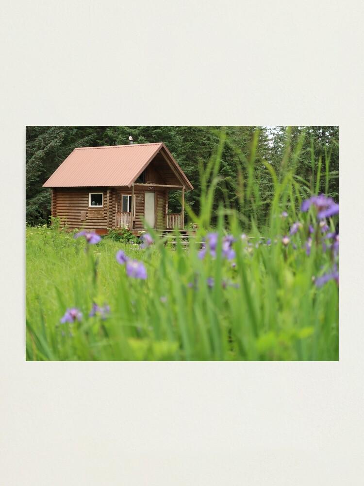 Alternate view of Alaskan Cabin with Irises  Photographic Print