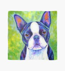 Colorful Boston Terrier Dog Scarf