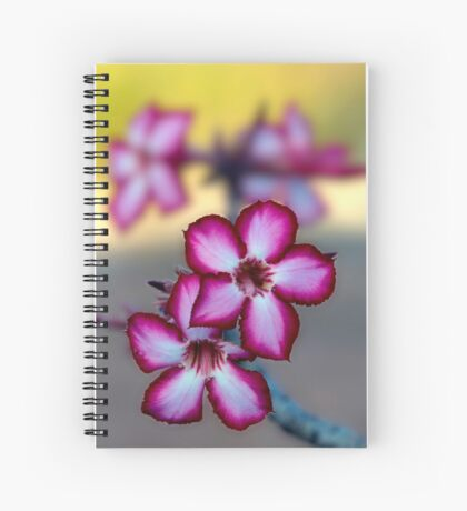 Colour Of Life XXXIX (Impala Lily) Spiral Notebook