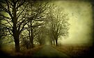 Empty way by Caterpillar