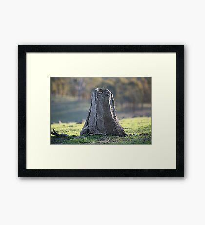 stumped Framed Print
