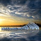 NYC Harbor Sunset with 3D IDWP peace message card by IDWP