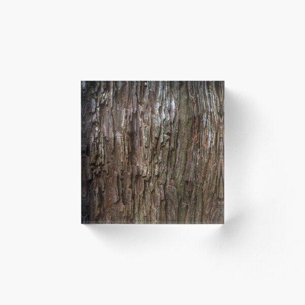 Redwood Bark Acrylic Block
