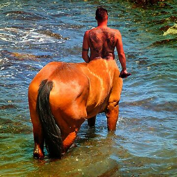 the last centaur by incant