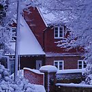 Winter Home by Paul Morley