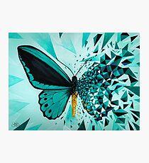 Explosión geométrica mariposa verde Lámina fotográfica