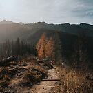 Autumn Hike - Landscape and Nature Photography by ewkaphoto