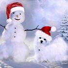 Hermes & Snowman by Morag Bates