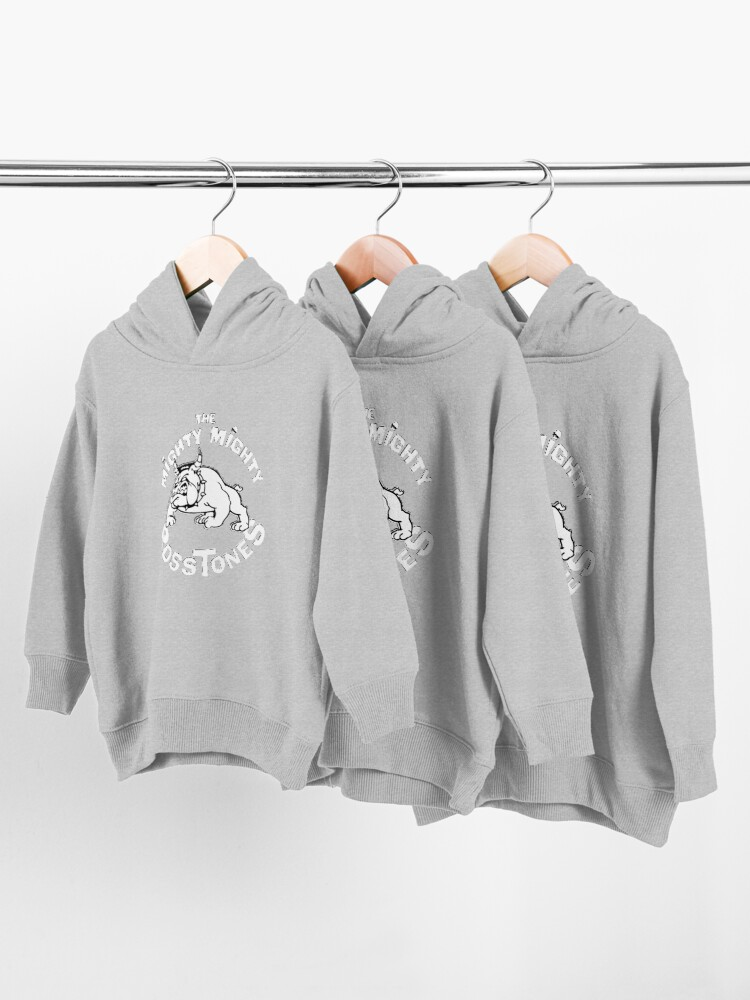 Alternate view of The Mighty Mighty Bosstones Toddler Pullover Hoodie