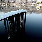 Winter on the River by Mojca Savicki