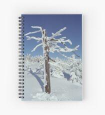 A diamond-dust day at the Smrk mountain 2 (Jizera mountains, Czech Republic) Spiral Notebook