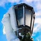 iced xmas lamp by Perggals© - Stacey Turner