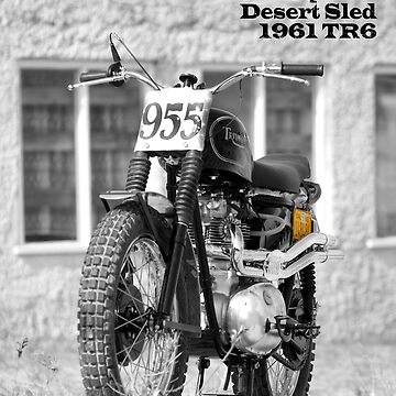 No 955 The Mcqueen Desert Sled by rogue-design