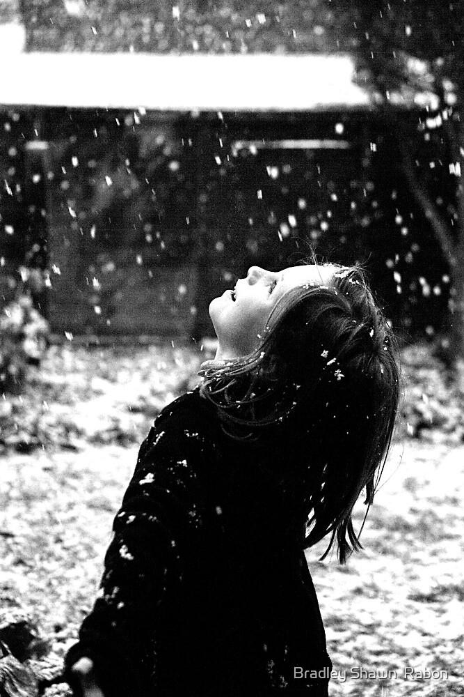"""""""Winter Joy"""" by Bradley Shawn  Rabon"""