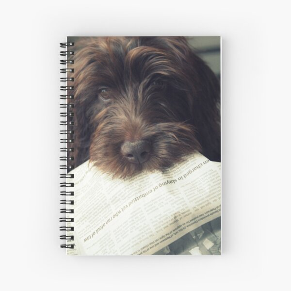 Can you pass the Op-ed page please? Spiral Notebook