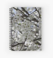 Braford Pear tree in the spring. Spiral Notebook