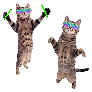 Cats At A Rave by srbpodcast