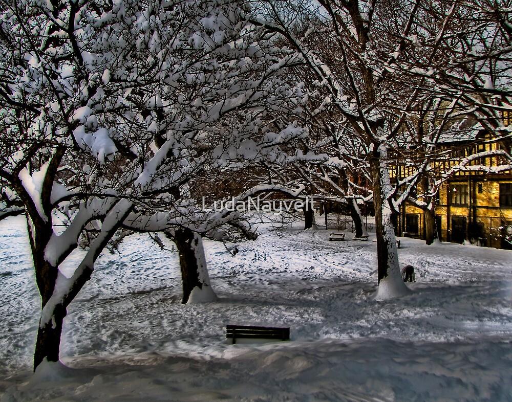 So, it's winter ! by LudaNayvelt