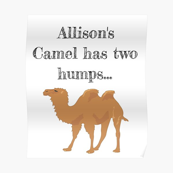 'Allison's Camel has two humps' Poster by stine1