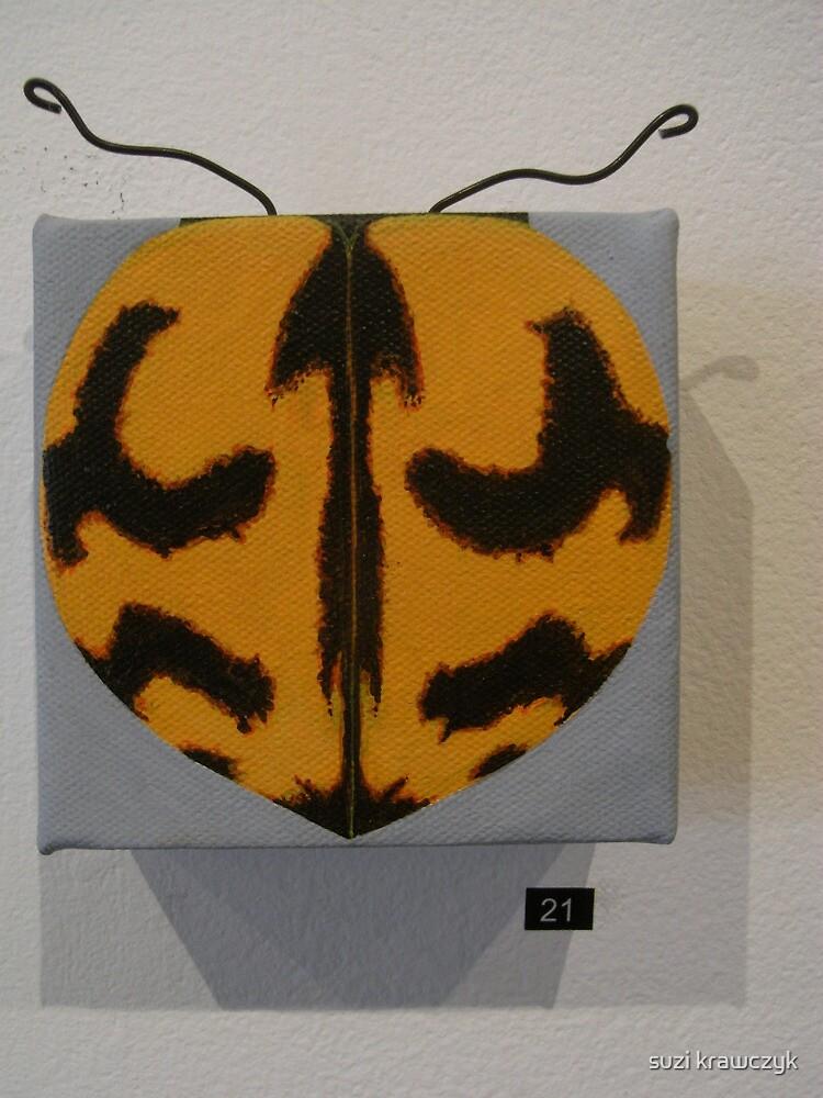 lady bug -coccinella transversalis by suzi krawczyk