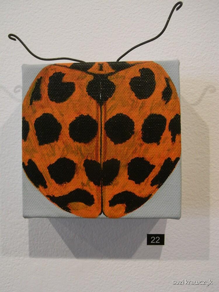 Lady bug-Harmonia conformis by suzi krawczyk