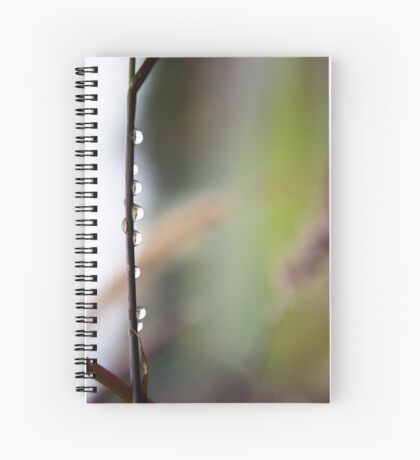 keep it simple Spiral Notebook