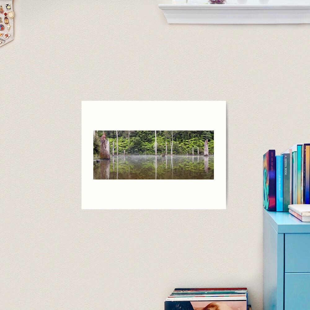 Lake Elisabeth, Otways National Park, Australia Art Print