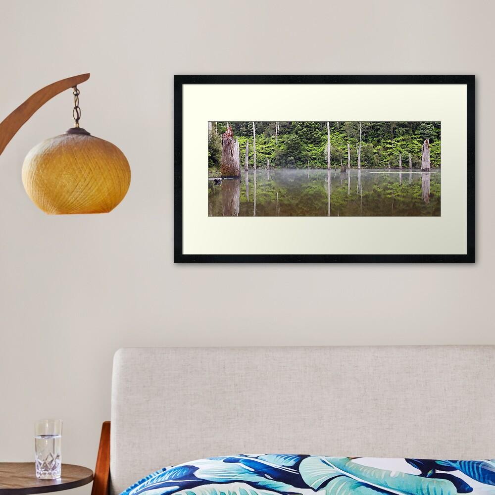Lake Elisabeth, Otways National Park, Australia Framed Art Print