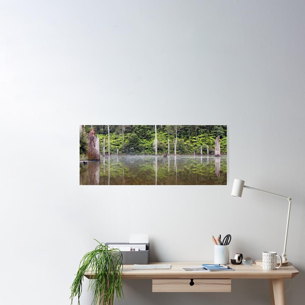 Lake Elisabeth, Otways National Park, Australia Poster