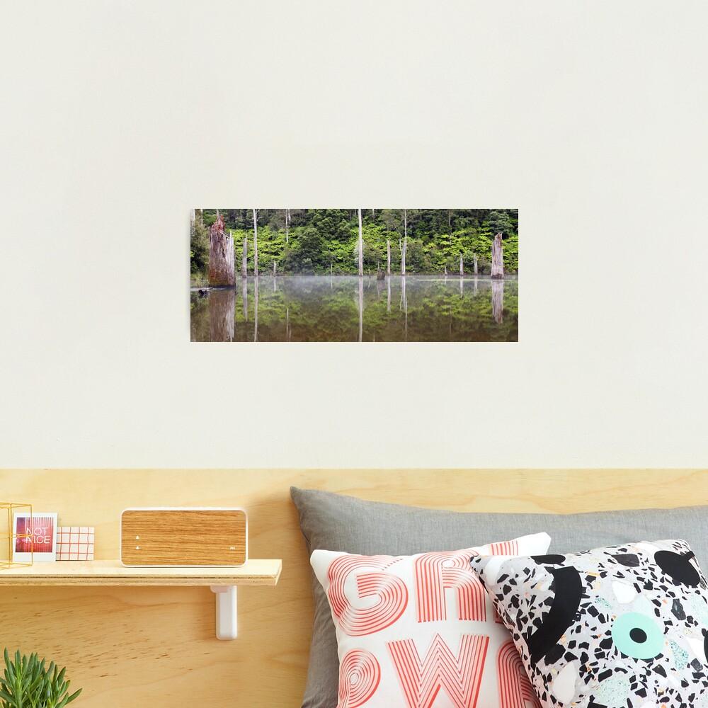 Lake Elisabeth, Otways National Park, Australia Photographic Print