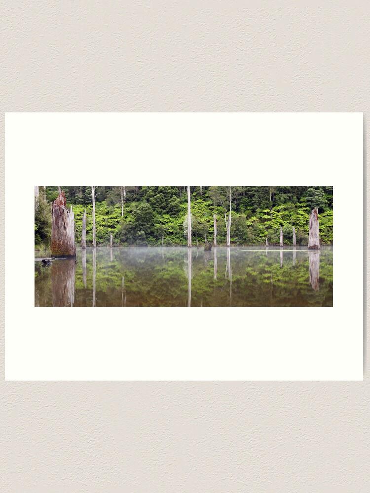 Alternate view of Lake Elisabeth, Otways National Park, Australia Art Print