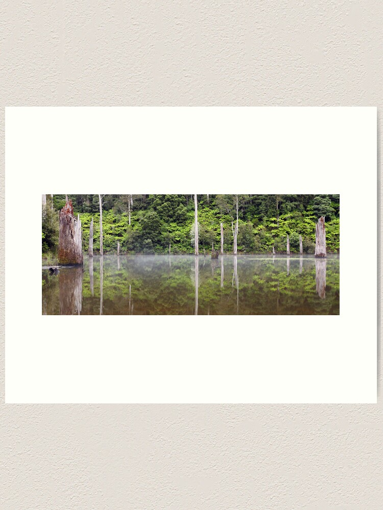 Alternate view of Lake Elisabeth, Otways National Park, Australia Art Print