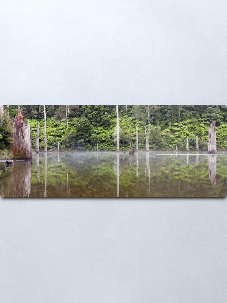 Alternate view of Lake Elisabeth, Otways National Park, Australia Metal Print