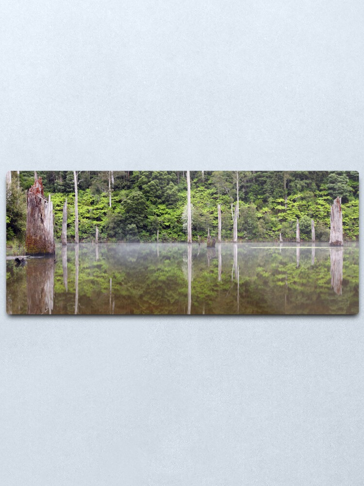 Alternate view of Lake Elisabeth, Otways National Park, Australia Metal Print