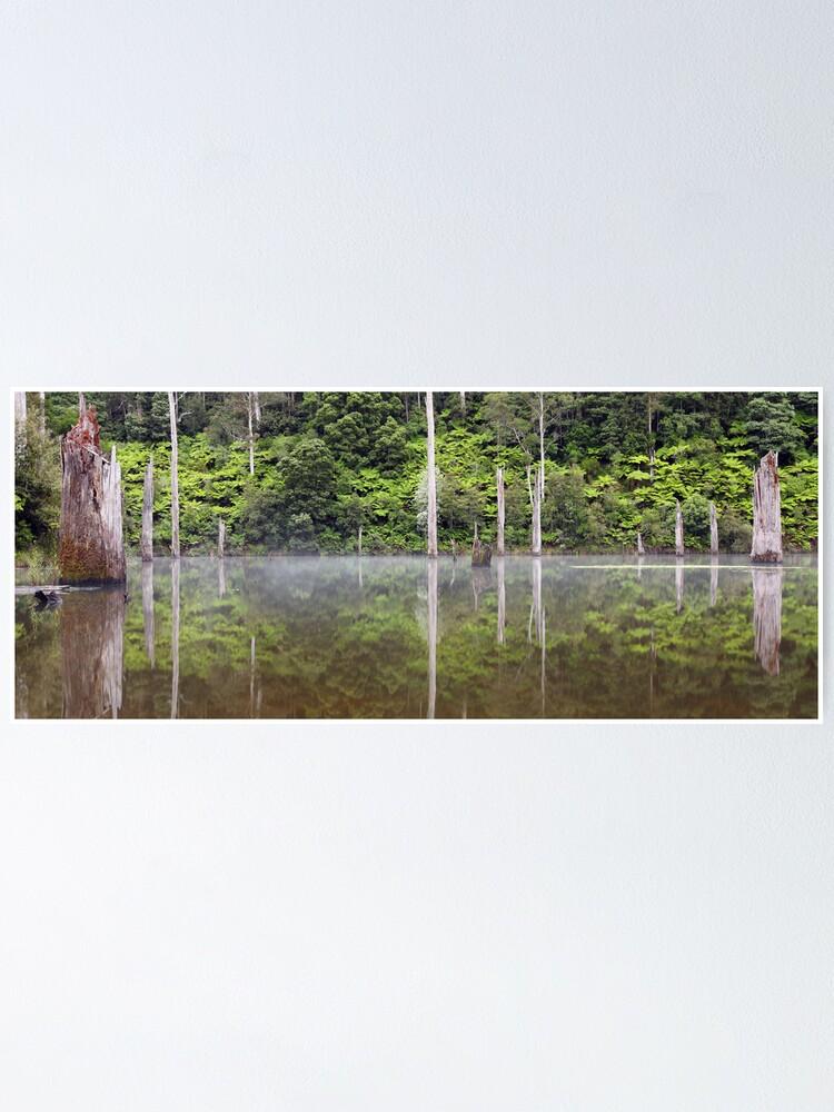 Alternate view of Lake Elisabeth, Otways National Park, Australia Poster