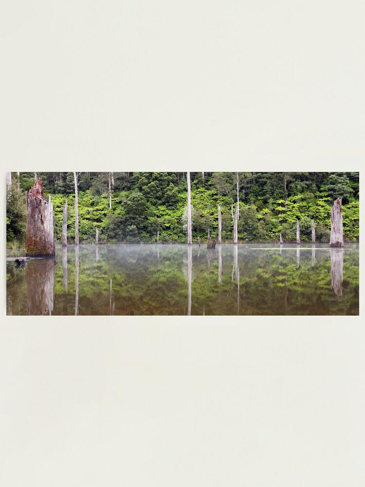 Alternate view of Lake Elisabeth, Otways National Park, Australia Photographic Print