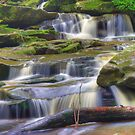 Rich Somersby Falls by Mike Salway