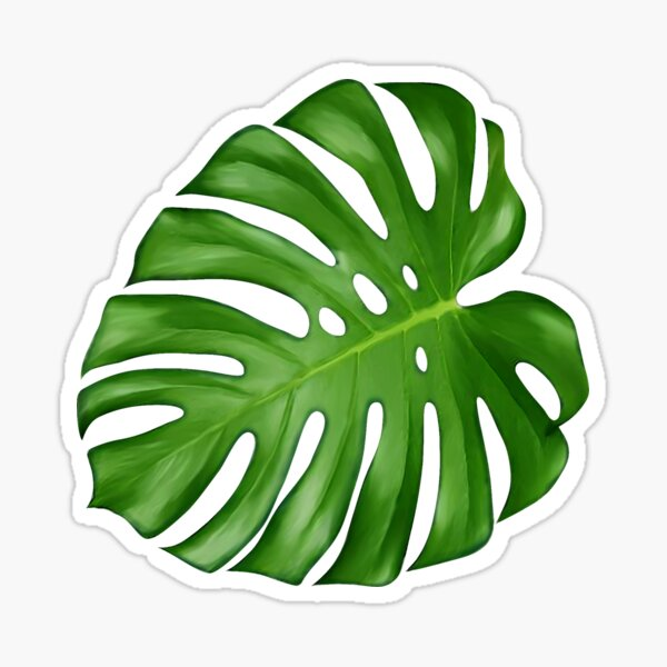 Monstera Deliciosa Leaf Sticker