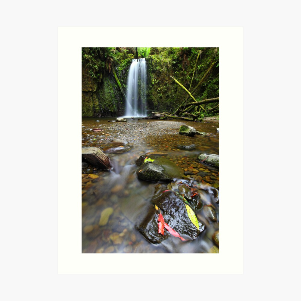 Mariners Falls, Otways National Park, Australia Art Print