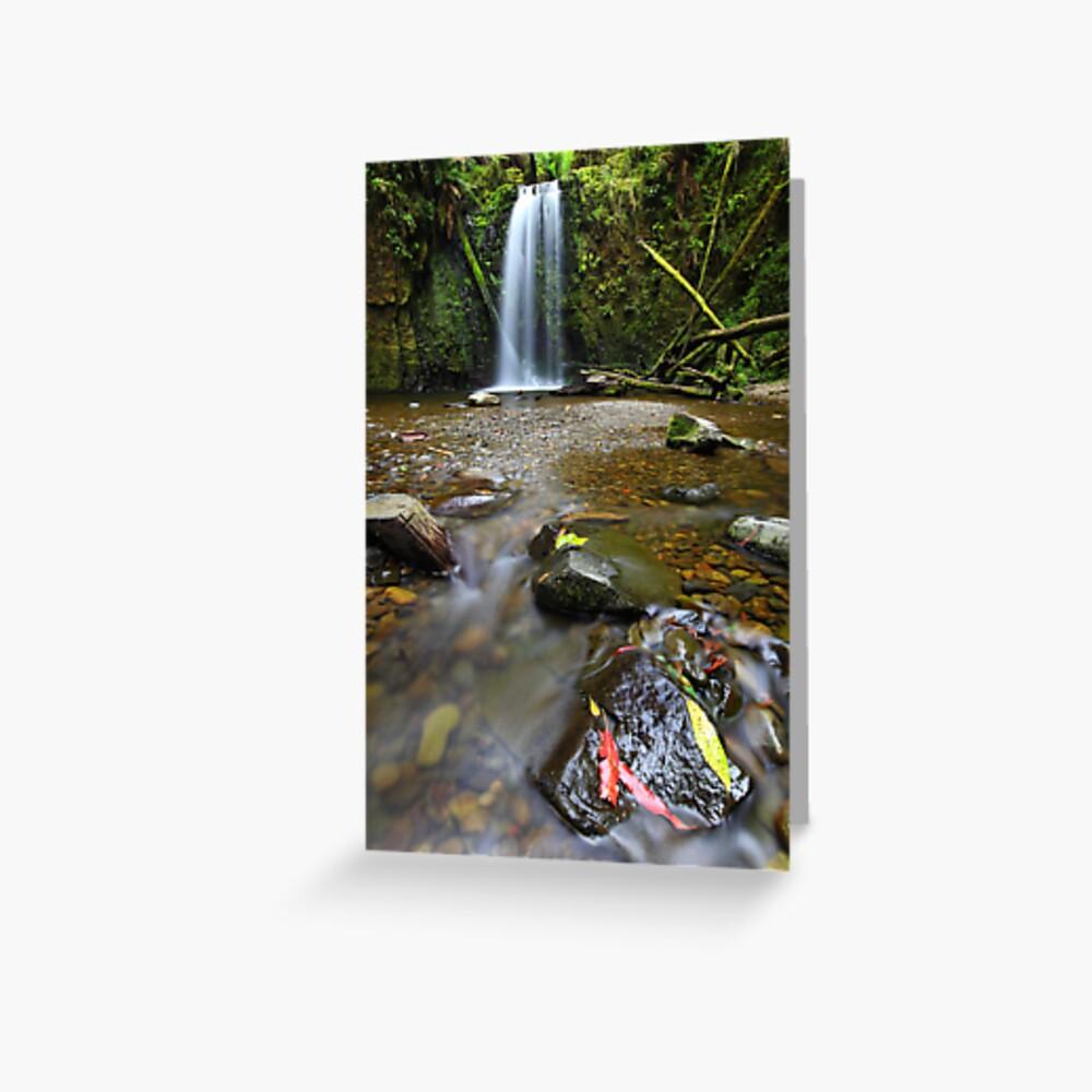 Mariners Falls, Otways National Park, Australia Greeting Card