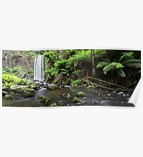 Hopetoun Falls, Otways National Park, Australia Poster