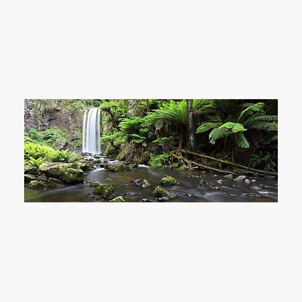 Hopetoun Falls, Otways National Park, Australia Photographic Print