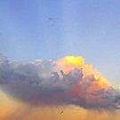 Rain Cloud Over Fremantle  by EOS20