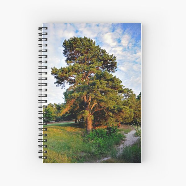 Lone Pine by the Lake Spiral Notebook