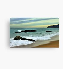 freezing afternoon Canvas Print