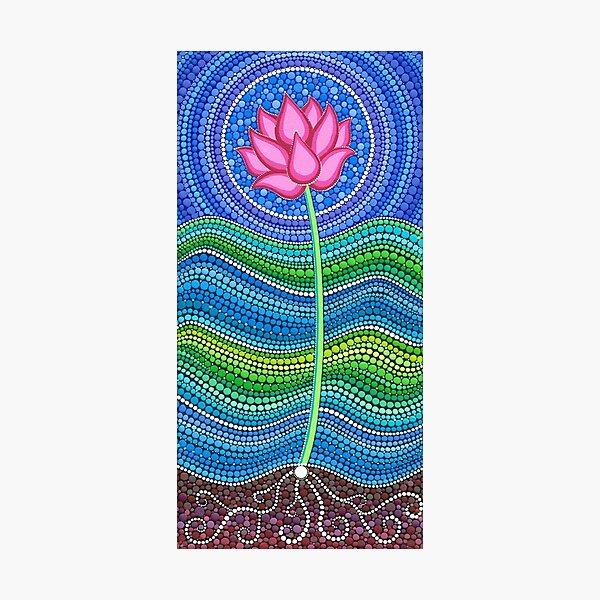 Lotus Growing Photographic Print